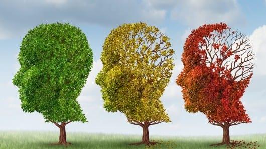 dementie ergotherapie Hilversum